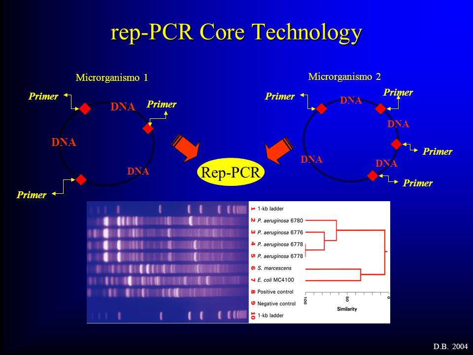 rep-PCR Core Technology Microrganismo 1 Rep-PCR Primer DNA Primer DNA Primer DNA Microrganismo 2 D.B. 2004