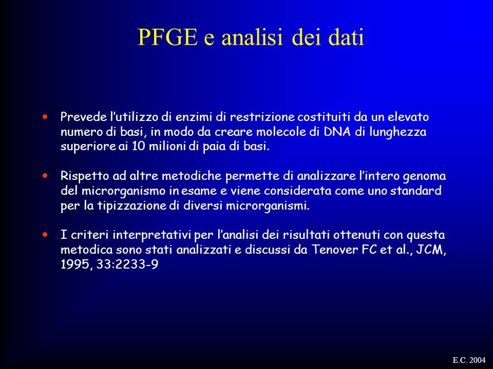 PFGE e analisi dei dati  Prevede l'utilizzo di enzimi di restrizione costituiti da un elevato numero di basi, in modo da creare molecole di DNA di lu