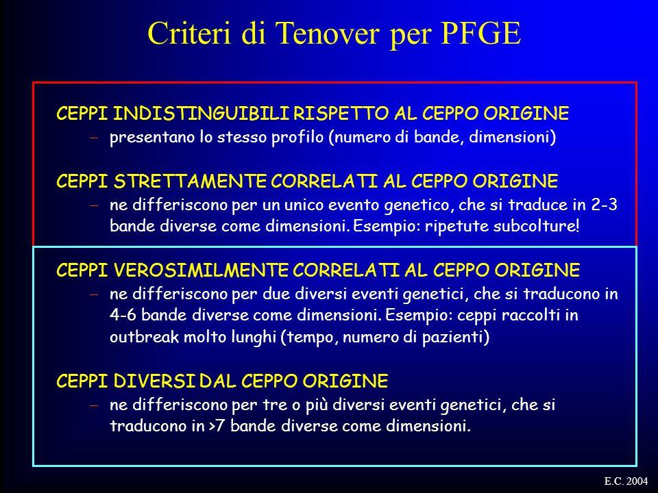 Criteri di Tenover per PFGE CEPPI INDISTINGUIBILI RISPETTO AL CEPPO ORIGINE  presentano lo stesso profilo (numero di bande, dimensioni) CEPPI STRETTA