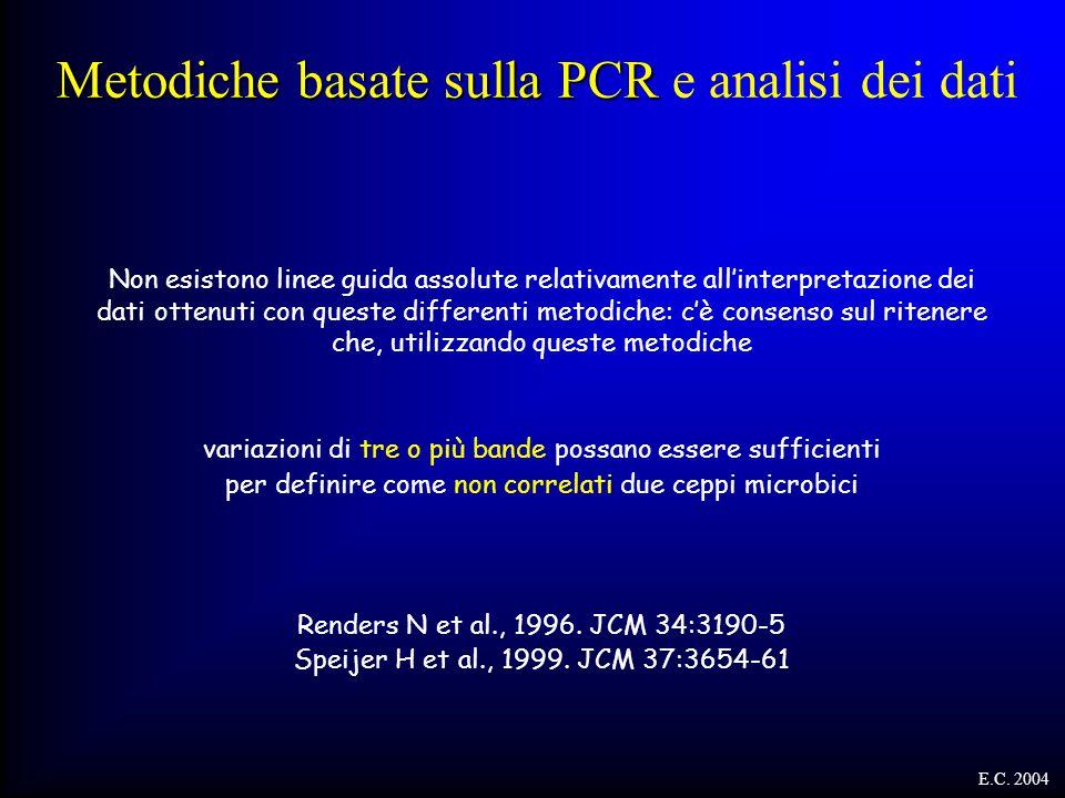 Metodiche basate sulla PCR Metodiche basate sulla PCR e analisi dei dati Non esistono linee guida assolute relativamente all'interpretazione dei dati