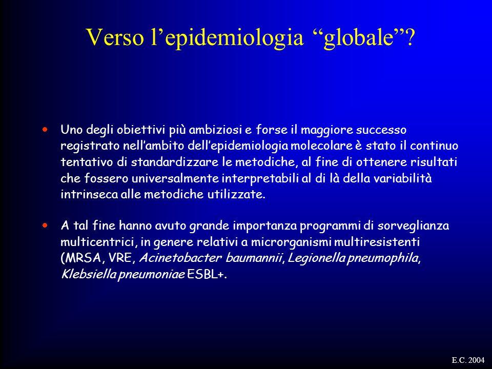 """Verso l'epidemiologia """"globale""""?  Uno degli obiettivi più ambiziosi e forse il maggiore successo registrato nell'ambito dell'epidemiologia molecolare"""