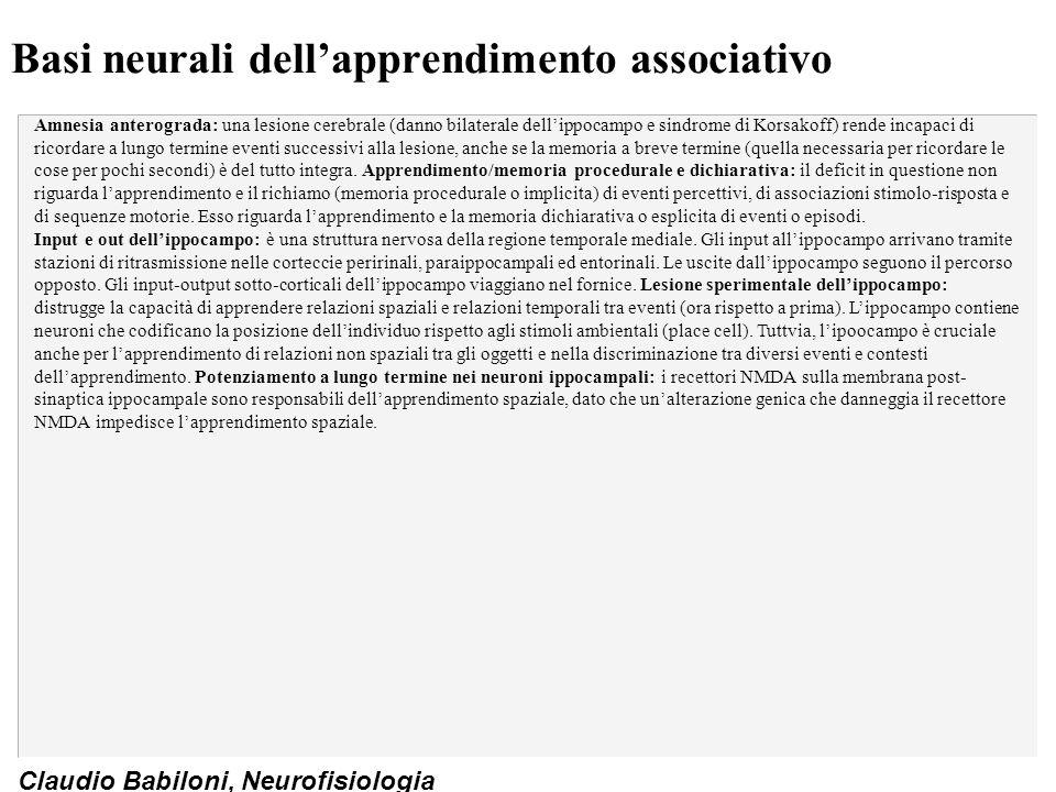 Claudio Babiloni, Neurofisiologia Modelli di potenziamento a lungo termine nei neuroni ippocampali (I) Fig.