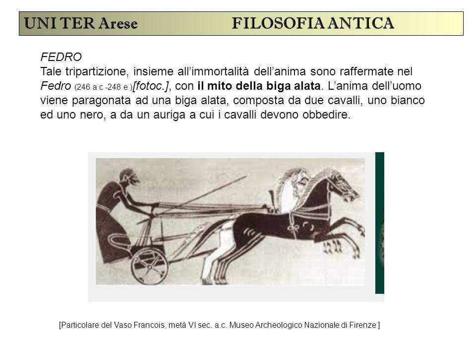 UNI TER Arese FILOSOFIA ANTICA FEDRO Tale tripartizione, insieme all'immortalità dell'anima sono raffermate nel Fedro (246 a c -248 e ) [fotoc.], con