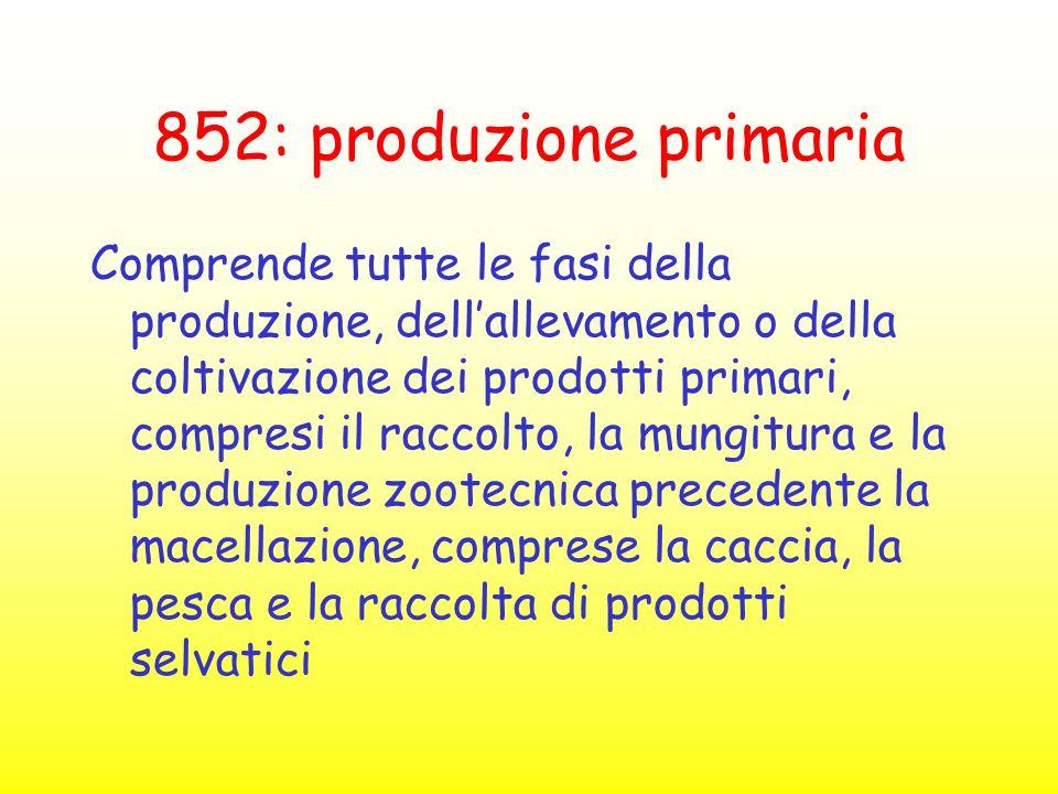 852: produzione primaria Comprende tutte le fasi della produzione, dell'allevamento o della coltivazione dei prodotti primari, compresi il raccolto, l