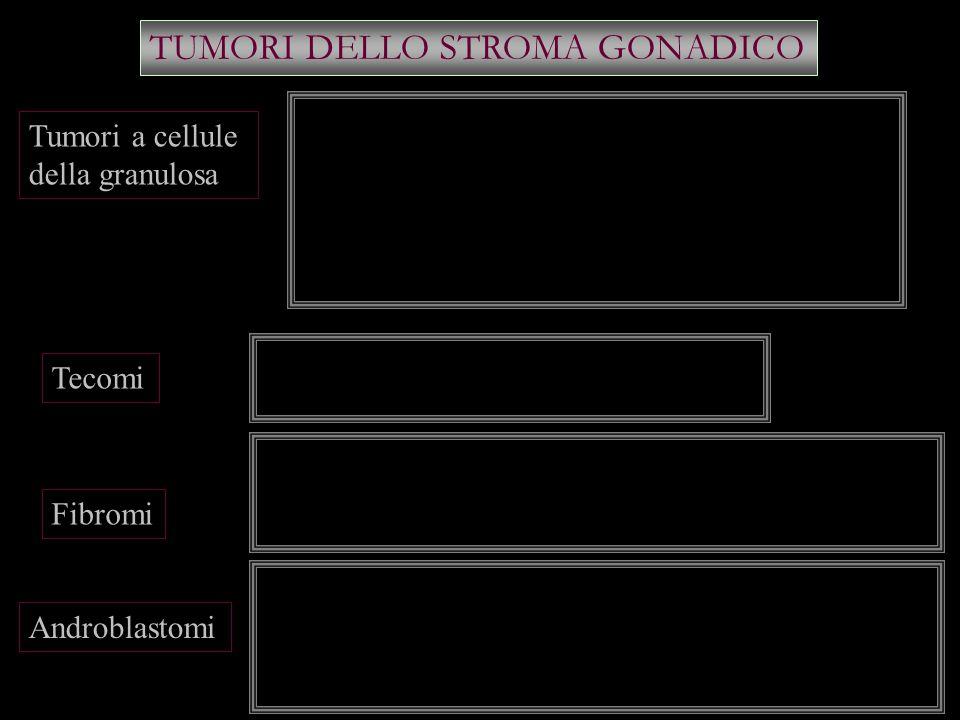 TUMORI DELLO STROMA GONADICO Tumori a cellule della granulosa Tecomi Fibromi Androblastomi Unilaterali Secernono quantità estrogeni pubertà : segni di