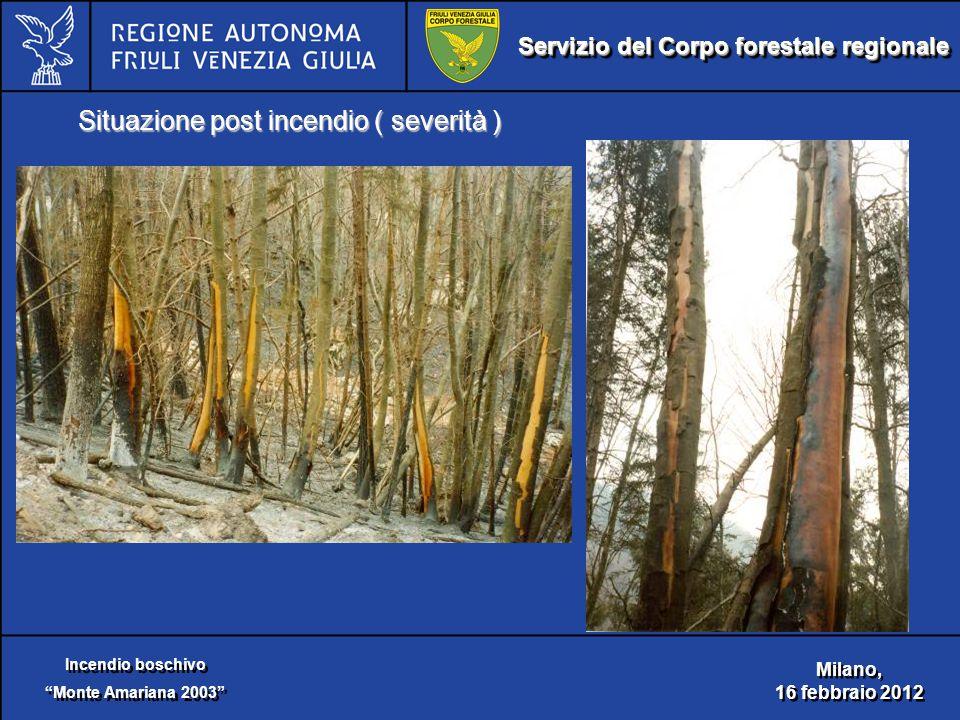 Servizio del Corpo forestale regionale Incendio boschivo Monte Amariana 2003 Incendio boschivo Monte Amariana 2003 Milano, 16 febbraio 2012 Milano, 16 febbraio 2012 Situazione post incendio ( severità )