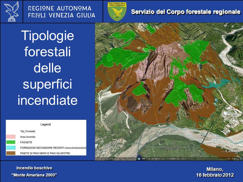 """Servizio del Corpo forestale regionale Incendio boschivo """"Monte Amariana 2003"""" Incendio boschivo """"Monte Amariana 2003"""" Milano, 16 febbraio 2012 Milano"""