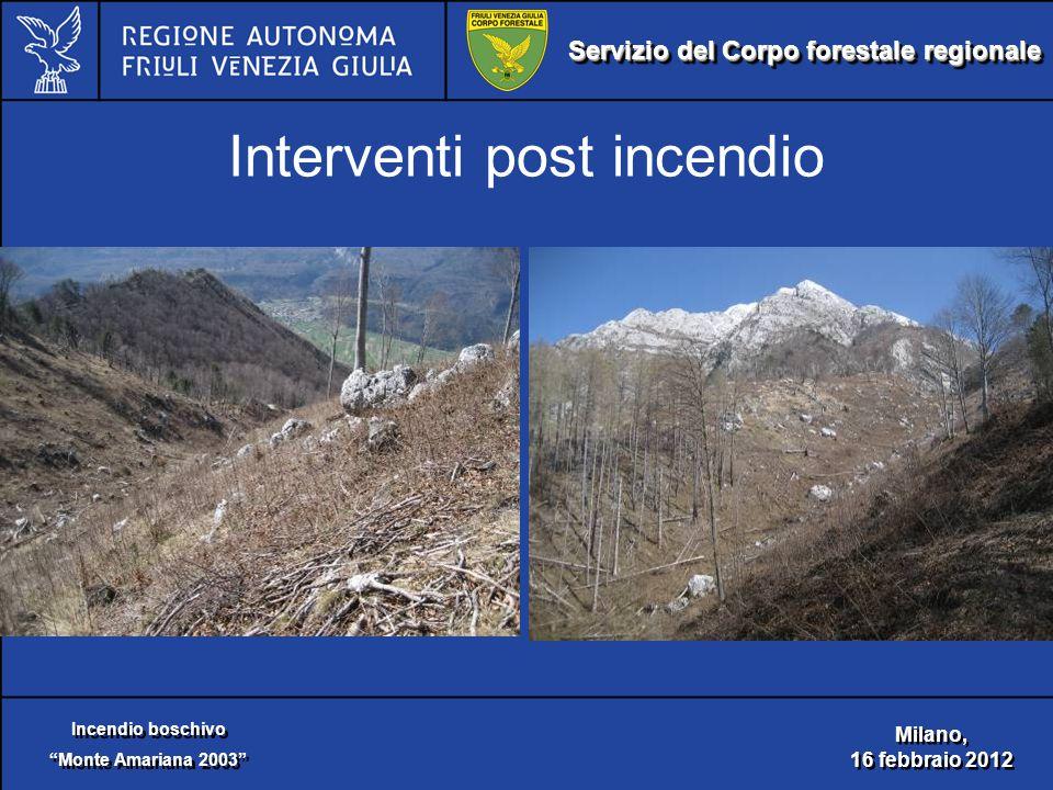 Servizio del Corpo forestale regionale Incendio boschivo Monte Amariana 2003 Incendio boschivo Monte Amariana 2003 Milano, 16 febbraio 2012 Milano, 16 febbraio 2012 Interventi post incendio