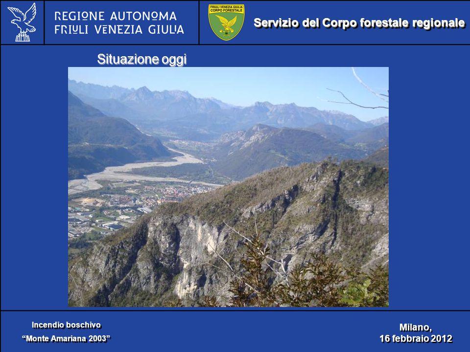 Servizio del Corpo forestale regionale Incendio boschivo Monte Amariana 2003 Incendio boschivo Monte Amariana 2003 Milano, 16 febbraio 2012 Milano, 16 febbraio 2012 Situazione oggi