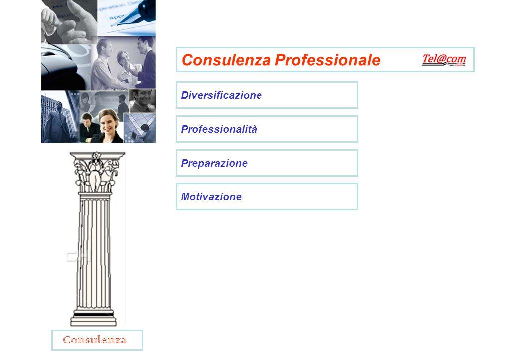 Consulenza Professionale Diversificazione Professionalità Preparazione Motivazione Consulenza