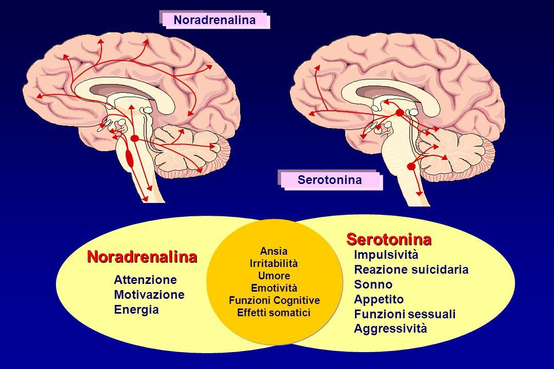 Noradrenalina Serotonina Ansia Irritabilità Umore Emotività Funzioni Cognitive Effetti somatici Ansia Irritabilità Umore Emotività Funzioni Cognitive