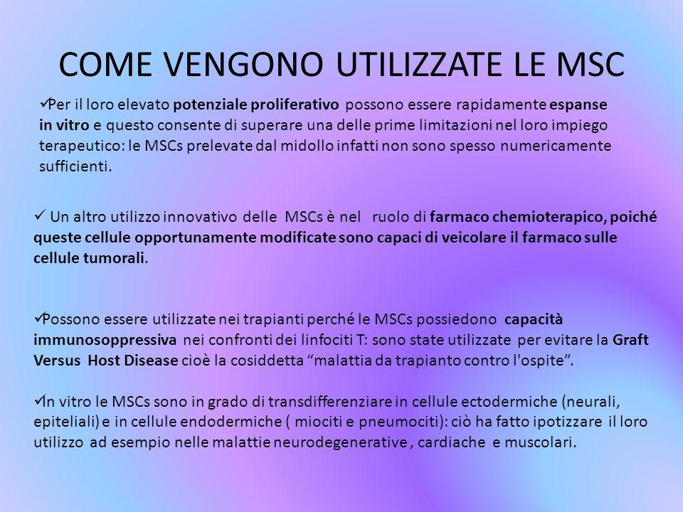 COME VENGONO UTILIZZATE LE MSC Per il loro elevato potenziale proliferativo possono essere rapidamente espanse in vitro e questo consente di superare una delle prime limitazioni nel loro impiego terapeutico: le MSCs prelevate dal midollo infatti non sono spesso numericamente sufficienti.