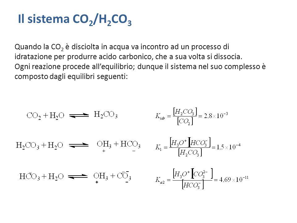 Il sistema CO 2 /H 2 CO 3 Quando la CO 2 è disciolta in acqua va incontro ad un processo di idratazione per produrre acido carbonico, che a sua volta si dissocia.