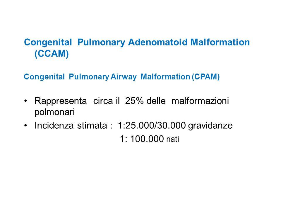Congenital Pulmonary Adenomatoid Malformation (CCAM) Congenital Pulmonary Airway Malformation (CPAM) Rappresenta circa il 25% delle malformazioni polm