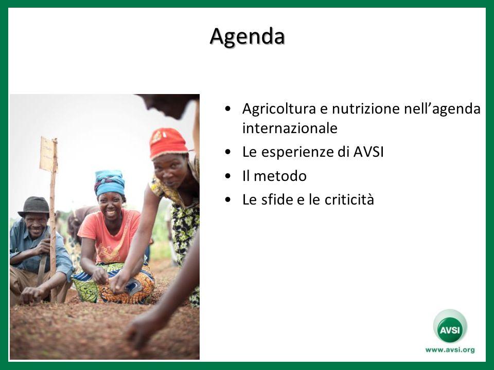 Agenda Agricoltura e nutrizione nell'agenda internazionale Le esperienze di AVSI Il metodo Le sfide e le criticità