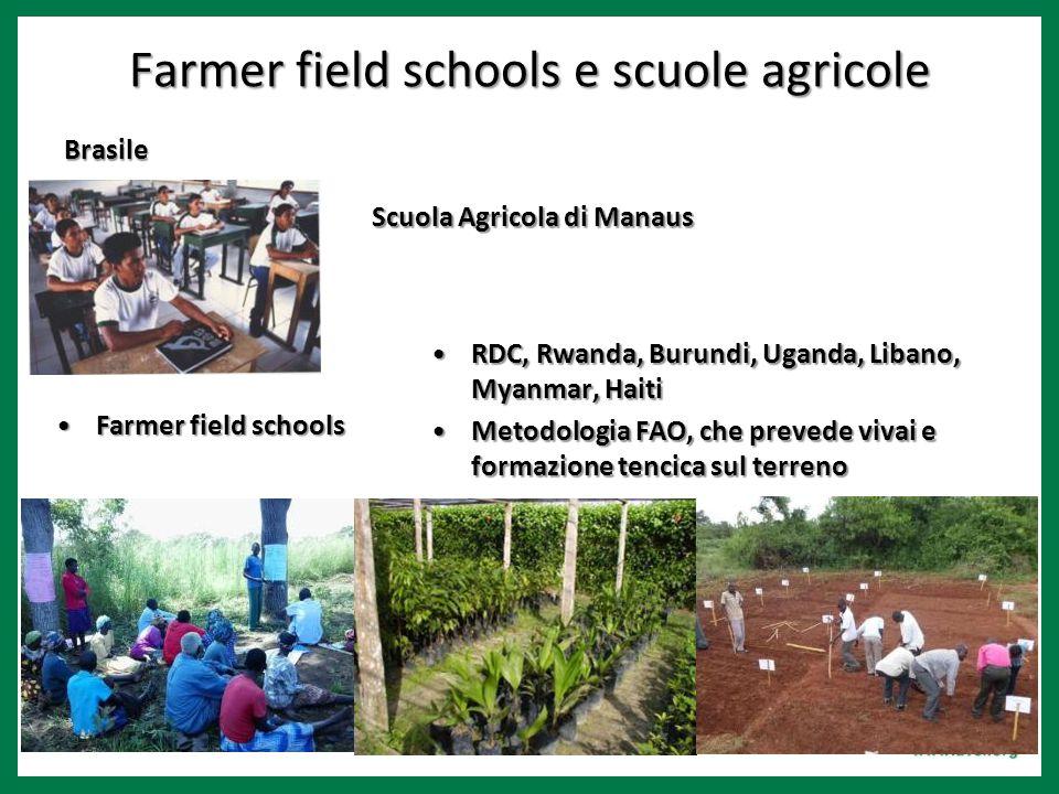 Farmer field schools e scuole agricole Brasile Scuola Agricola di Manaus Farmer field schoolsFarmer field schools RDC, Rwanda, Burundi, Uganda, Libano