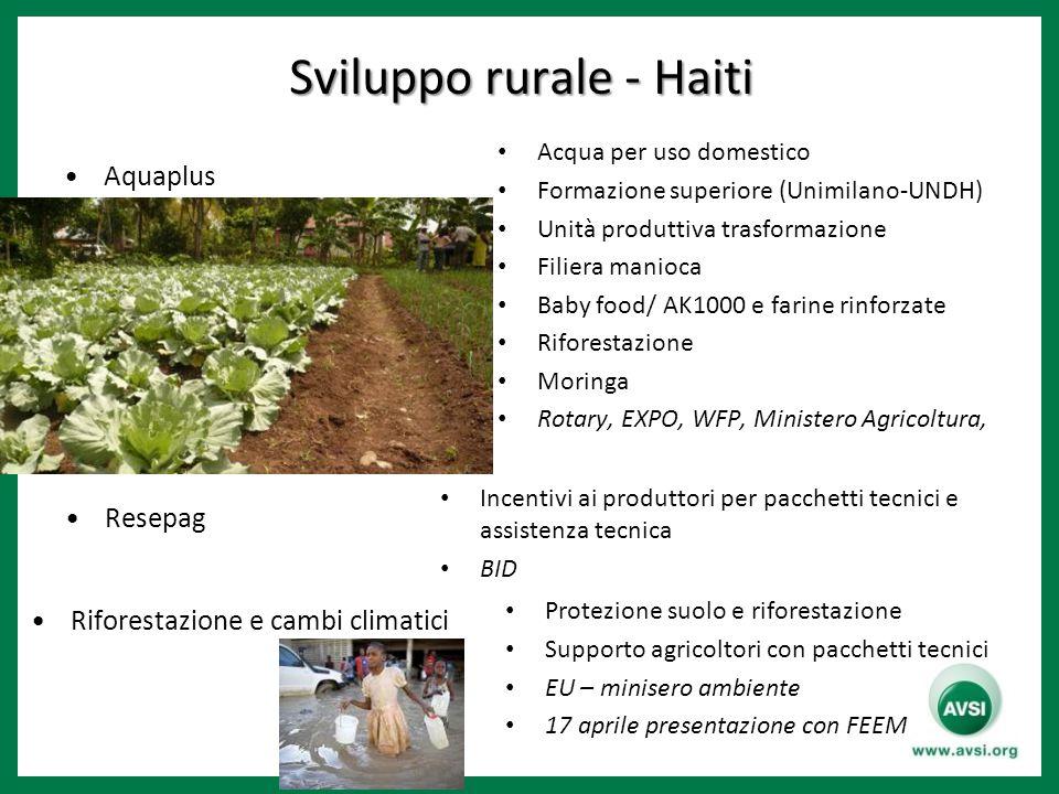 Sviluppo rurale - Haiti Sviluppo rurale - Haiti Aquaplus Resepag Riforestazione e cambi climatici Acqua per uso domestico Formazione superiore (Unimil