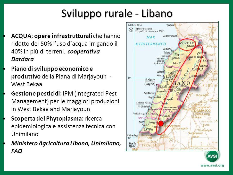 Sviluppo rurale - Libano ACQUA: opere infrastrutturali che hanno ridotto del 50% l'uso d'acqua irrigando il 40% in più di terreni. cooperativa Dardara