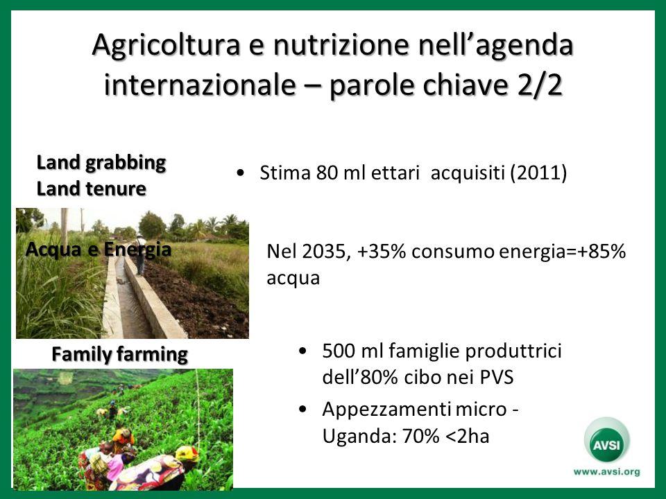 Agricoltura e nutrizione nell'agenda internazionale – parole chiave 2/2 Acqua e Energia Family farming 500 ml famiglie produttrici dell'80% cibo nei P