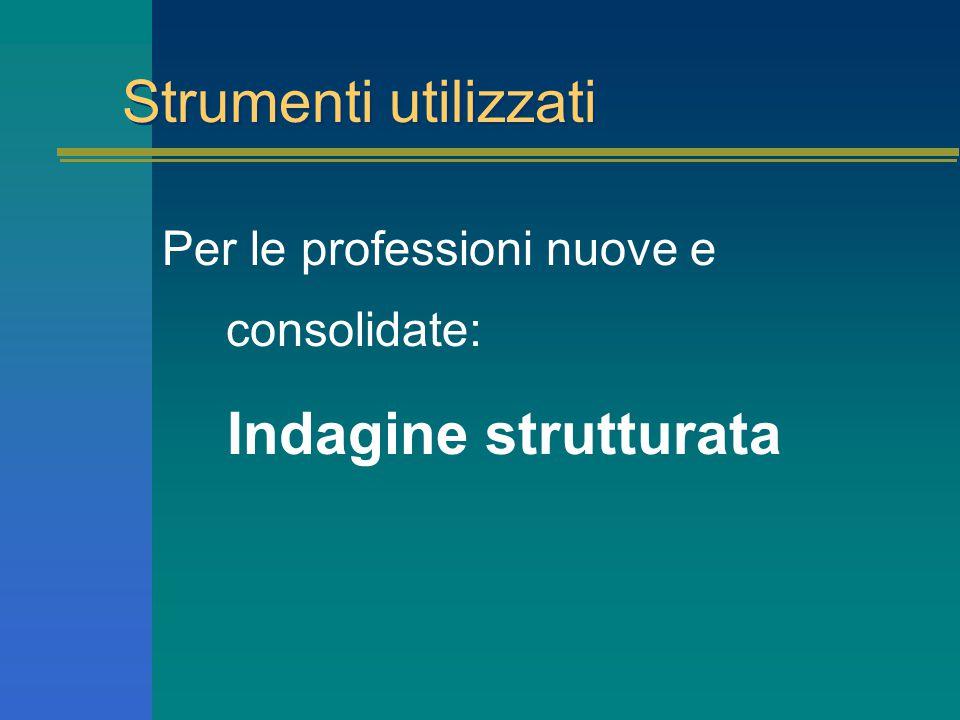 Strumenti utilizzati Per le professioni nuove e consolidate: Indagine strutturata