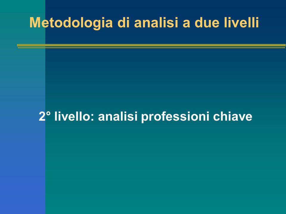 Metodologia di analisi a due livelli 2° livello: analisi professioni chiave