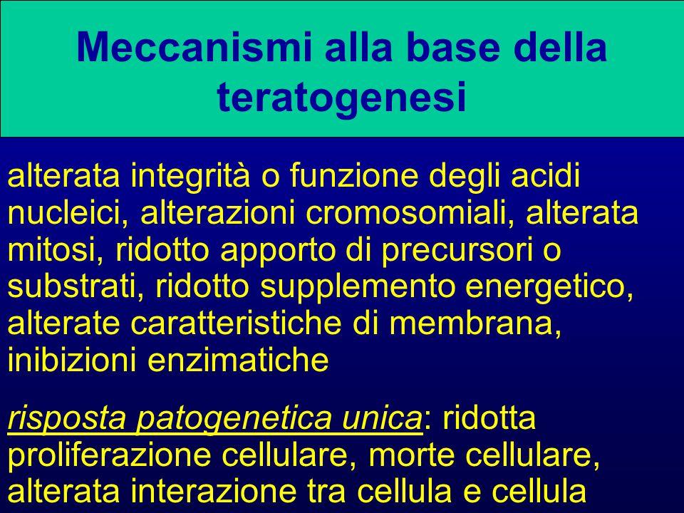 Meccanismi alla base della teratogenesi alterata integrità o funzione degli acidi nucleici, alterazioni cromosomiali, alterata mitosi, ridotto apporto di precursori o substrati, ridotto supplemento energetico, alterate caratteristiche di membrana, inibizioni enzimatiche risposta patogenetica unica: ridotta proliferazione cellulare, morte cellulare, alterata interazione tra cellula e cellula