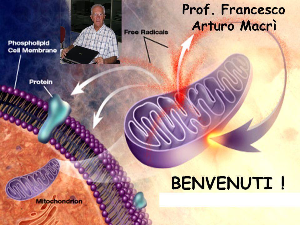 BENVENUTI ! Prof. Francesco Arturo Macrì