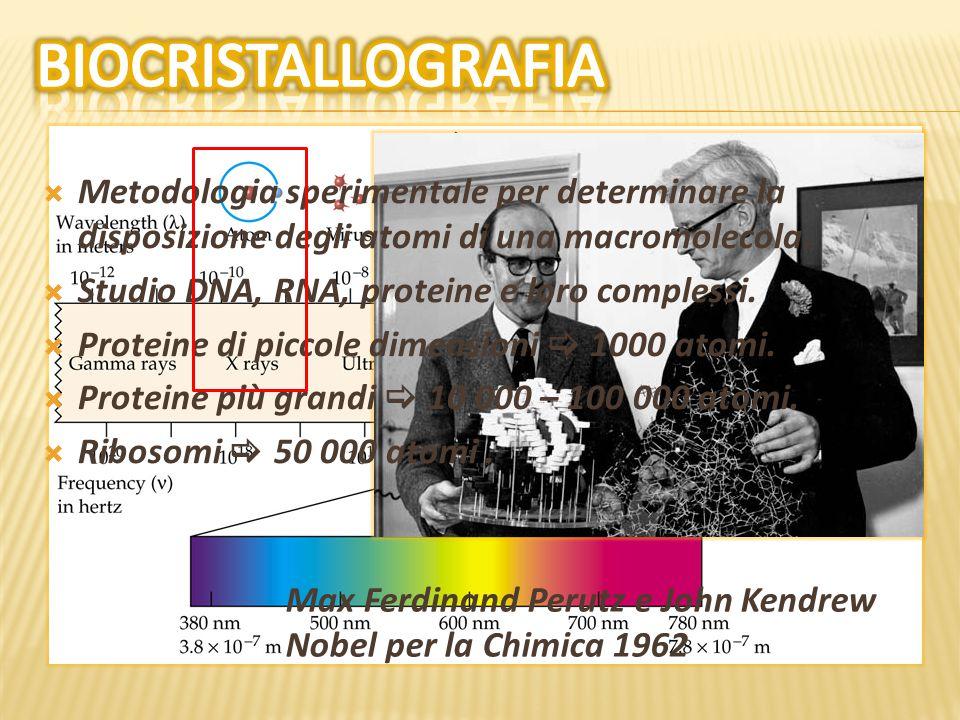  Condensazione della cromatina.  Metilazione del DNA.  Modifiche istoni.