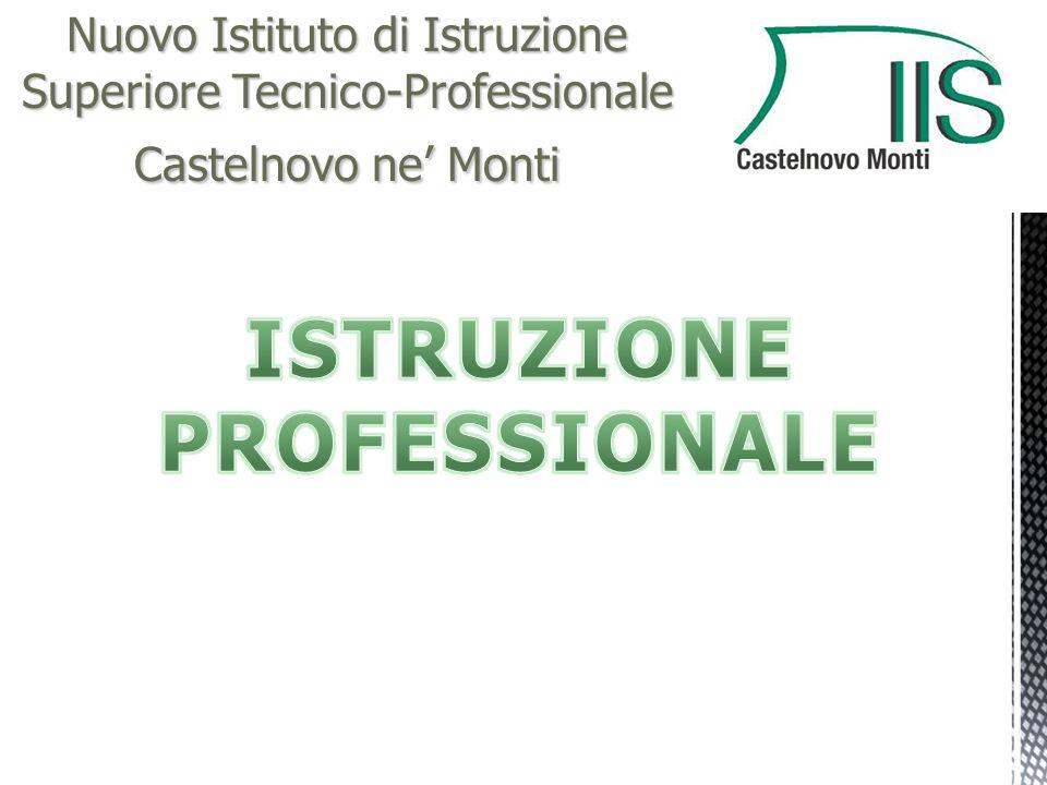 Nuovo Istituto di Istruzione Superiore Tecnico-Professionale Castelnovo ne' Monti