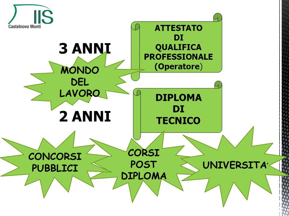 + 3 ANNI 2 ANNI ATTESTATO DI QUALIFICA PROFESSIONALE (Operatore) DIPLOMA DI TECNICO MONDO DEL LAVORO CORSI POST DIPLOMA UNIVERSITA ' CONCORSI PUBBLICI