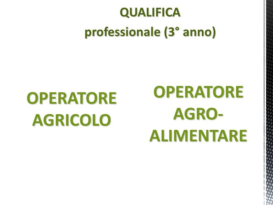 QUALIFICA professionale (3° anno) OPERATOREAGRICOLO OPERATORE AGRO- ALIMENTARE