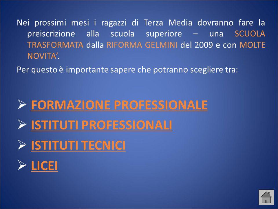 Gli ISTITUTI PROFESSIONALI Gli istituti professionali offrono l'istruzione generale e tecnico – professionale necessaria per ruoli tecnici nei settori produttivi e nei servizi di rilevanza nazionale.