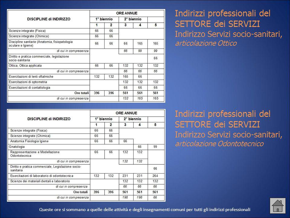Indirizzi professionali del SETTORE dei SERVIZI Indirizzo Servizi socio-sanitari, articolazione Ottico Indirizzi professionali del SETTORE dei SERVIZI