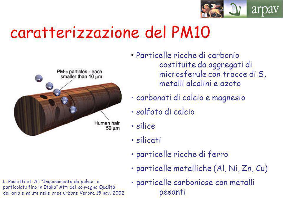 caratterizzazione del PM10 Particelle ricche di carbonio costituite da aggregati di microsferule con tracce di S, metalli alcalini e azoto carbonati di calcio e magnesio solfato di calcio silice silicati particelle ricche di ferro particelle metalliche (Al, Ni, Zn, Cu) particelle carboniose con metalli pesanti L.