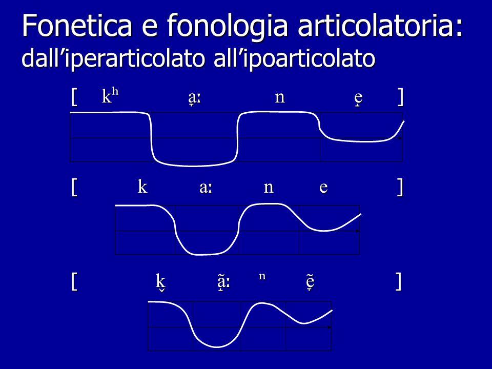 Fonetica e fonologia articolatoria: un esempio dall'it. stiloglosso stiloglosso labbra (arr.) labbra (arr.) velo (abb.) velo (abb.) pliche vocali plic