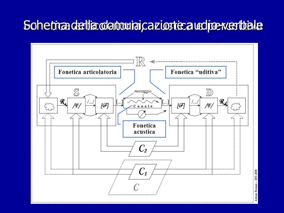 Fonetica articolatoria, acustica e percettiva Fonetica articolatoriaFonetica uditiva Fonetica acustica Schema della comunicazione audio-verbale