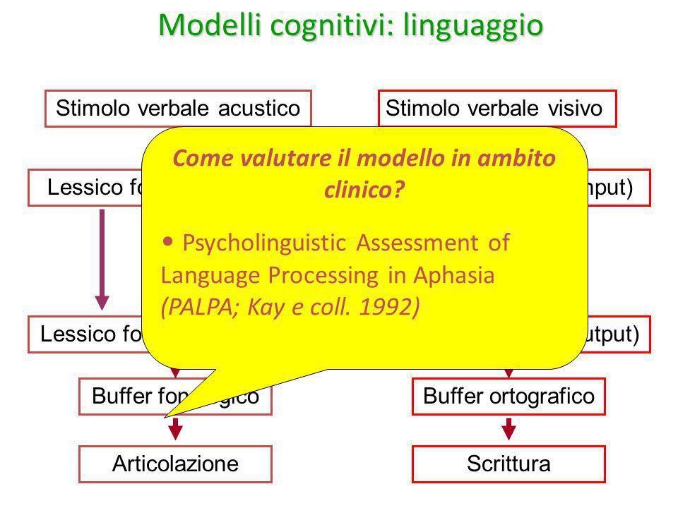 Modelli cognitivi: linguaggio Stimolo verbale acusticoStimolo verbale visivo Lessico fonologico (input)Lessico ortografico (input) Memoria semantica L