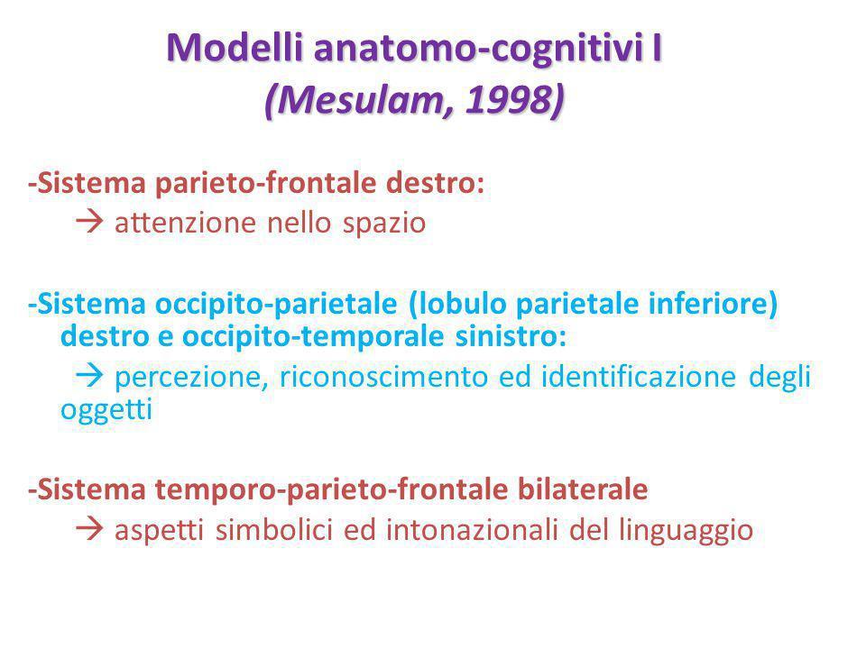 Modelli anatomo-cognitivi I (Mesulam, 1998) -Sistema parieto-frontale destro:  attenzione nello spazio -Sistema occipito-parietale (lobulo parietale