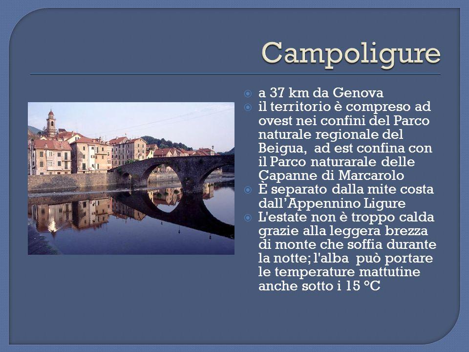  I filigranisti di Campo Ligure sono gli unici custodi di quest´arte in tutta la Liguria dall´Ottocento ad oggi.