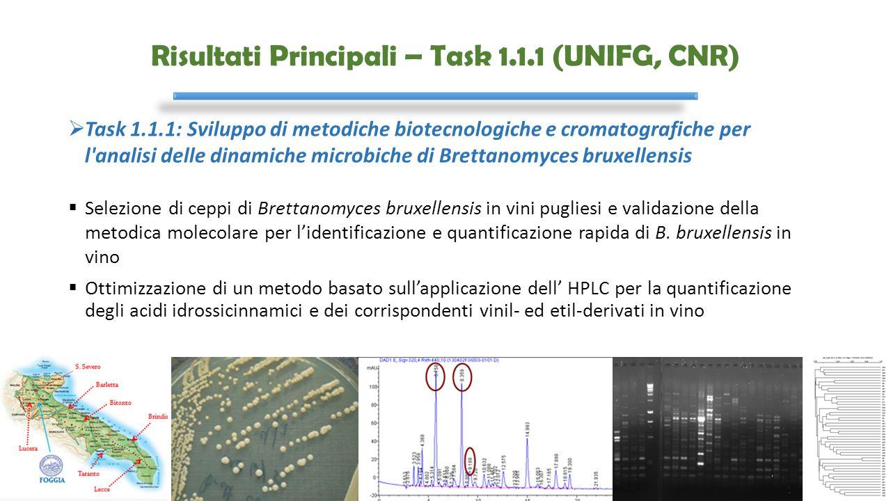 Risultati Principali – Task 1.1.1 (UNIFG, CNR)  Task 1.1.1: Sviluppo di metodiche biotecnologiche e cromatografiche per l'analisi delle dinamiche mic