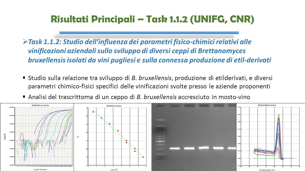 Risultati Principali – Task 1.1.2 (UNIFG, CNR)  Task 1.1.2: Studio dell'influenza dei parametri fisico-chimici relativi alle vinificazioni aziendali