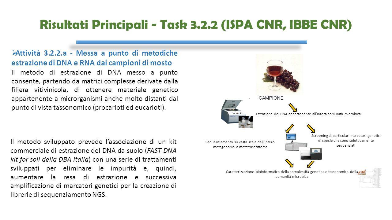 Risultati Principali - Task 3.2.2 (ISPA CNR, IBBE CNR)  Attività 3.2.2.a - Messa a punto di metodiche estrazione di DNA e RNA dai campioni di mosto I