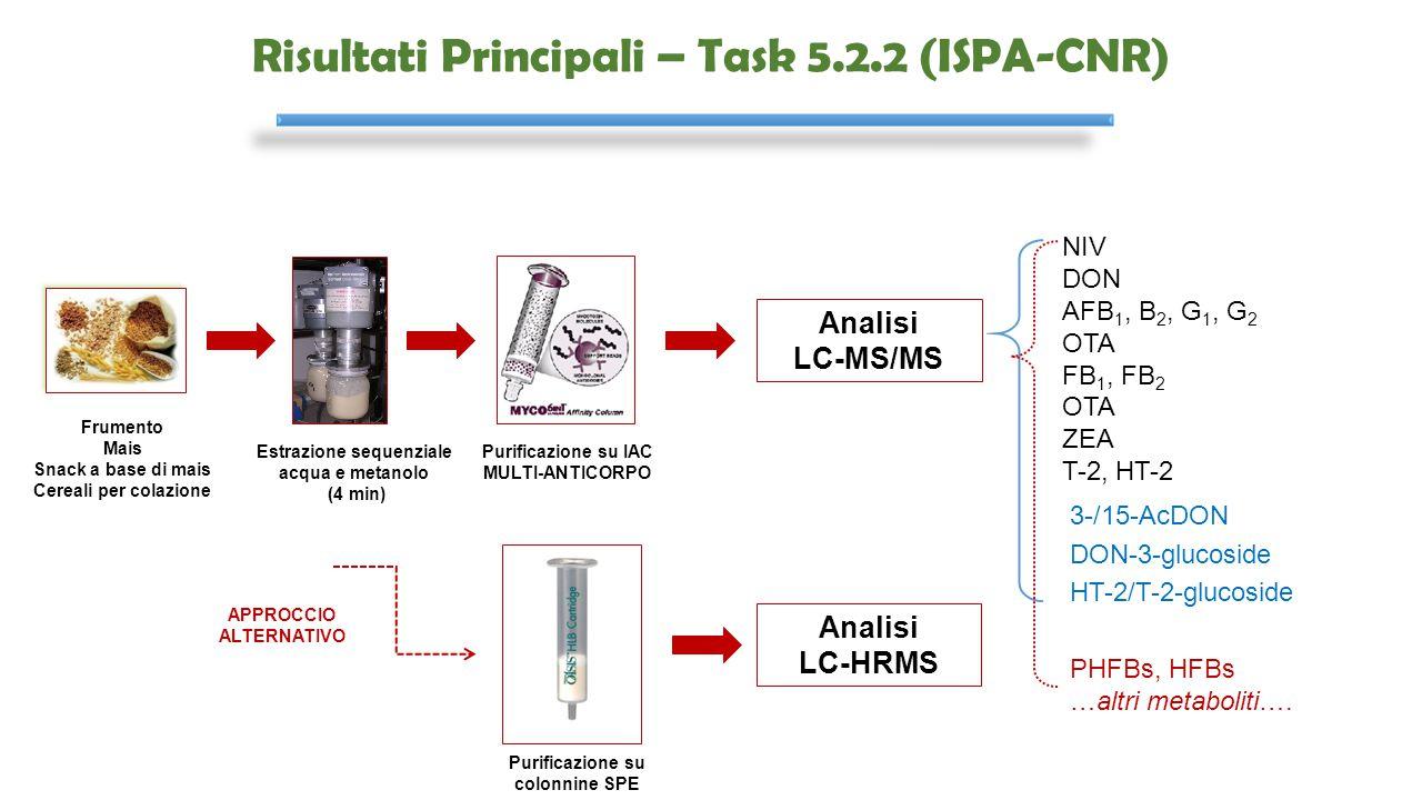Risultati Principali – Task 5.2.2 (ISPA-CNR) Estrazione sequenziale acqua e metanolo (4 min) Purificazione su IAC MULTI-ANTICORPO Frumento Mais Snack