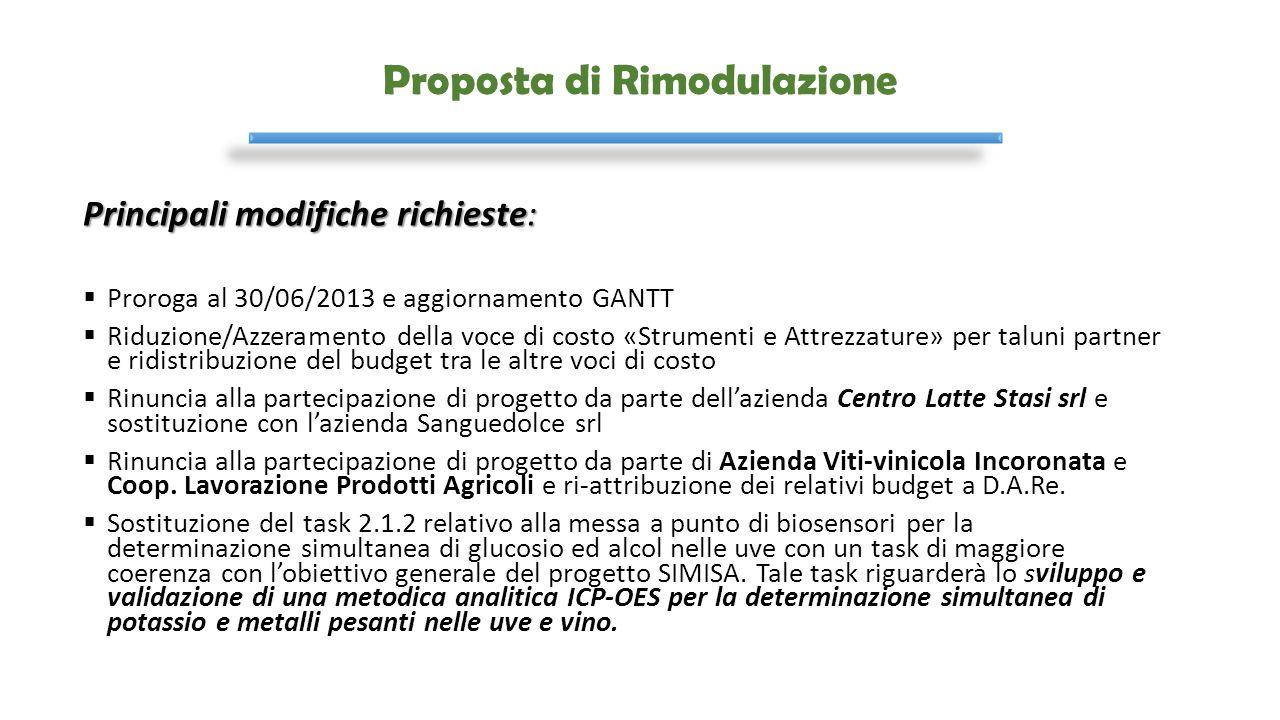 Proposta di Rimodulazione Principali modifiche richieste:  Proroga al 30/06/2013 e aggiornamento GANTT  Riduzione/Azzeramento della voce di costo «S