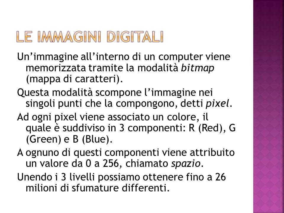 Un'immagine all'interno di un computer viene memorizzata tramite la modalità bitmap (mappa di caratteri). Questa modalità scompone l'immagine nei sing