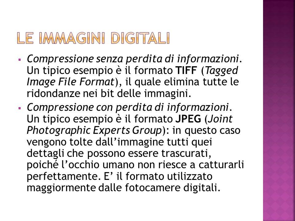  Compressione senza perdita di informazioni. Un tipico esempio è il formato TIFF (Tagged Image File Format), il quale elimina tutte le ridondanze nei