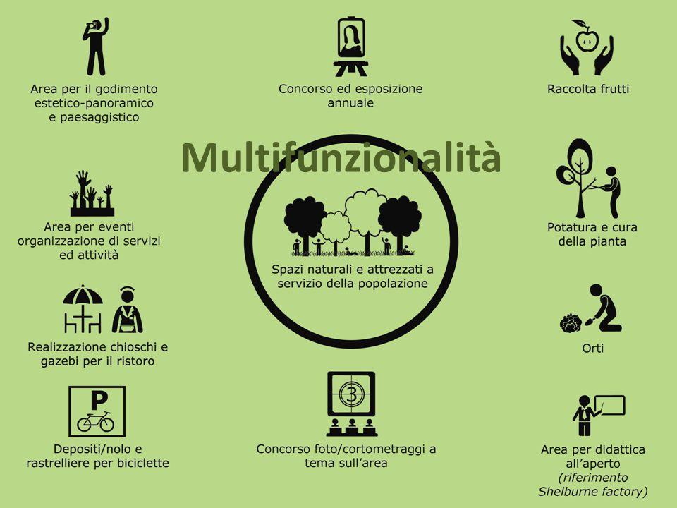 Multifunzionalità