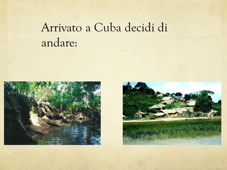 Arrivato a Cuba decidi di andare: