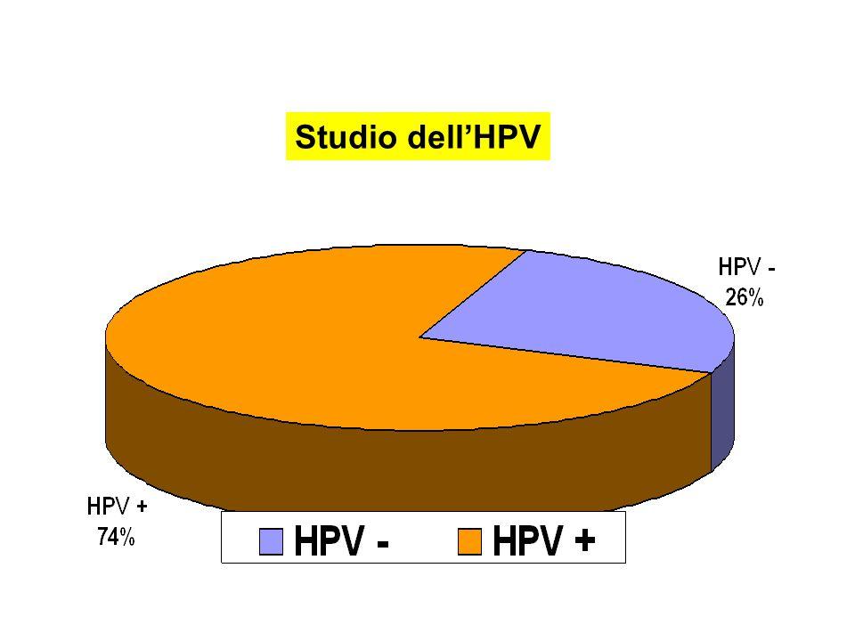 Studio dell'HPV
