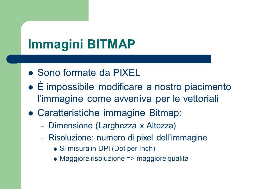 Immagini BITMAP Sono formate da PIXEL È impossibile modificare a nostro piacimento l'immagine come avveniva per le vettoriali Caratteristiche immagine
